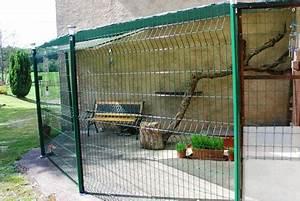 Maison Exterieur Pour Chat : conditions de vente elevage des tr sors d 39 isis ~ Dailycaller-alerts.com Idées de Décoration