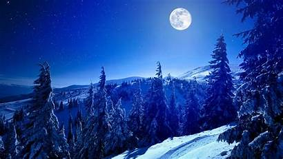 Forest Winter Moon Background Wallpapers 4k Nature