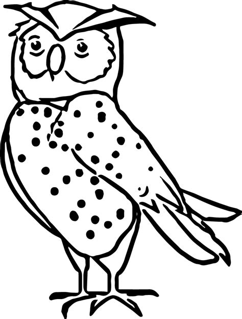 nocturnal animals coloring pages wecoloringpagecom