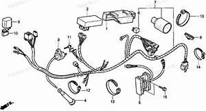 1996 honda goldwing stereo wiring diagram o wiring diagram With goldwing audio wiring diagram on honda goldwing 1800 engine diagram