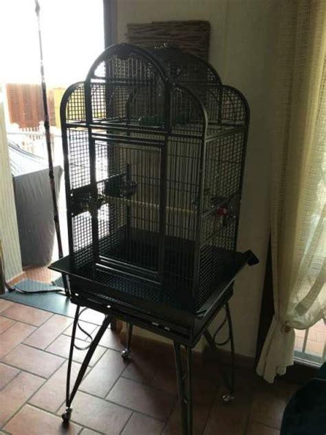 Gabbia Per Ara - gabbia voliera pappagalli ara conuro a prato kijiji