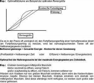 Kosten Nutzen Rechnung : natrium i kosten ~ Lizthompson.info Haus und Dekorationen