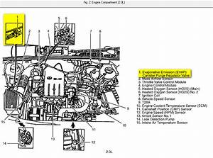 Vw Beetle Coil Wiring Diagram Honda Prelude Coil Wiring Diagram Wiring Diagram