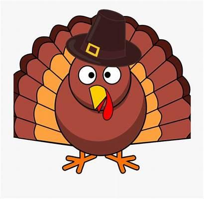 Turkey Clip Thanksgiving Turkeys Cartoon Why Transparent