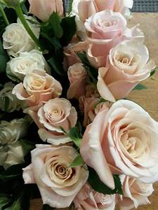 Mother of Pearl Roses flowers Pinterest