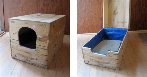 8 creative ways to hide your cat 39 s litter box healthy paws