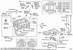 Lexus Ls 430 Guide  Oil Level Gage  Engine  Cylinder
