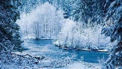 Winter Scene Scenes