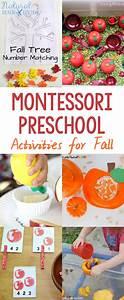 9716 best Montessori