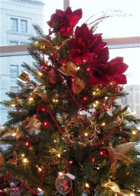 christmas tree topper inspiration   akron tree