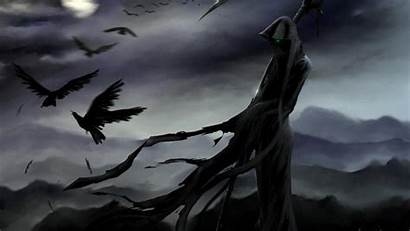 Raven Wallpapers Bird Backgrounds Grim Background Desktop