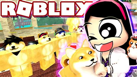 2249 roblox boombox codes pictures and cliparts download. All the WONDERS That is of DOGE - Roblox Roleplay Doge ...