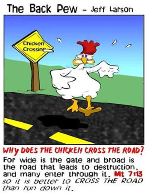bird cartoons   pew bp