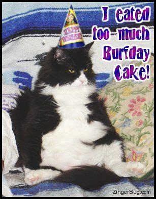 images  inspirational birthday memes