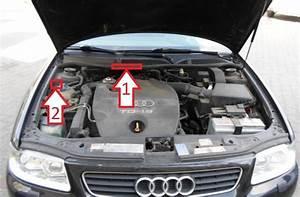 Location Audi A3 : audi a3 1996 2003 vin ~ Medecine-chirurgie-esthetiques.com Avis de Voitures