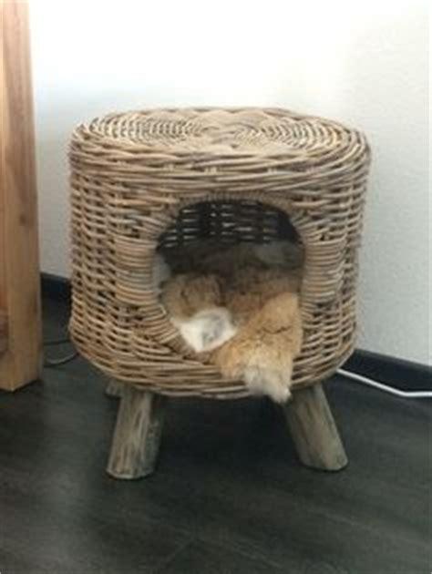 kattenmand steigerhout leuke kattenmand steigerhout voor onze huisdieren