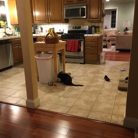 need help with kitchen flooring transition to dining and