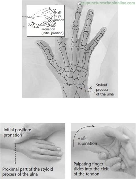 acupuncture grossesse si e 1000 images about points are portals on