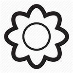 Spring Icon Flower Daisy Icons Outdoors Engine