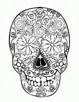 Coloring Skull Sugar Adults Pdf Popular sketch template