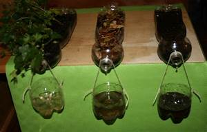 Science experiment on soil erosion - La pappadolce