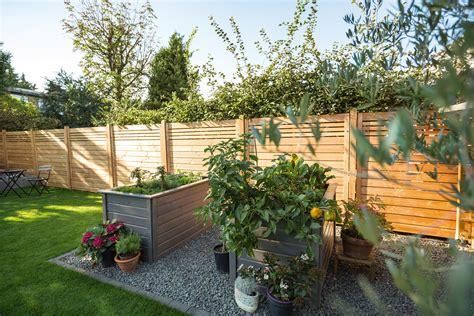 Sichtschutz Mit Pflanzen Im Garten by Sichtschutz F 252 R Den Garten So Entscheiden Sie Richtig Obi