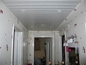 Lambris Pvc Pour Plafond : faux plafond salle de bain pvc ~ Dailycaller-alerts.com Idées de Décoration