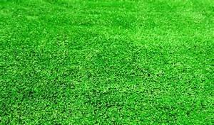 Acheter Gazon Artificiel : achetez en gros gazon synth tique tapis en ligne des ~ Edinachiropracticcenter.com Idées de Décoration
