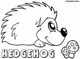 Hedgehog Coloring Pages Print Colorings sketch template