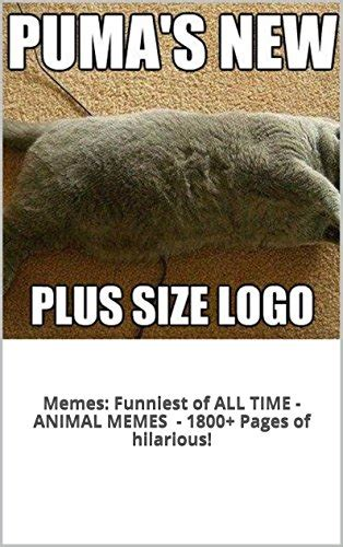 Best Meme Of All Time - best animal memes of all time www imgkid com the image kid has it