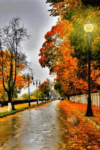 Android Hd Autumn Wallpapers by Autumn Wallpaper For Android On Wallpaperget