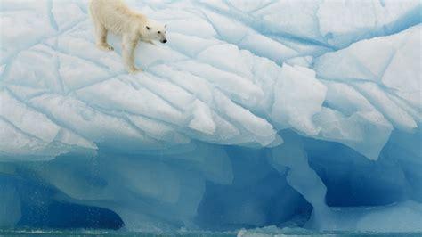 der arktis wird der klimawandel besonders deutlich bmbf
