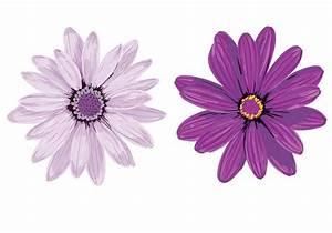 Purple Flower Vectors - Download Free Vector Art, Stock ...