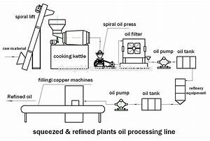 5t  24h Peanuts Oil Pretreatment Plant   Olive Oil Cold