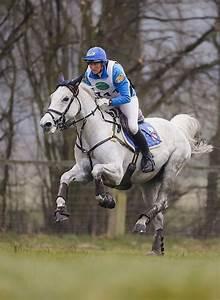 Pin by Susan Knox on My Kind of Ponies | Horses, Horseback ...