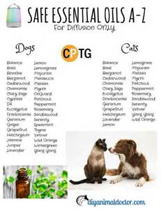 diffusing essential oils around cats list of essential oils essential oils and on