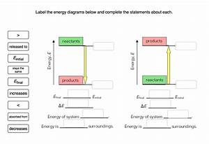 Solved  Label The Energy Diagrams Below And Complete The S