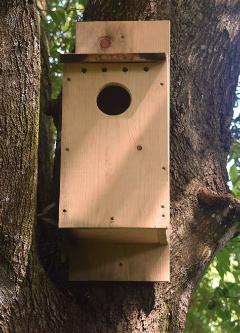 owl nest box building chikaming open lands