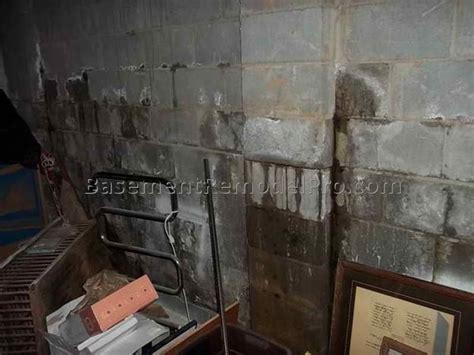 water coming up through basement floor best basement