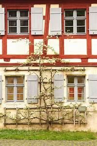 Apfelbaum Für Balkon : 15 besten spalierobst bilder auf pinterest apfelbaum ~ Michelbontemps.com Haus und Dekorationen