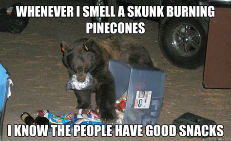 Skunk Meme - whenever i smell a skunk burning pinecones i know the people have good snacks food snob bear