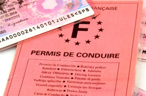 perte du permis de conduire site permis de conduire - Site Du Permis