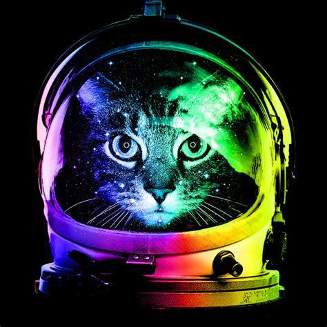 Rainbow Astronaut Cat Desktop Wallpaper [1024x768]
