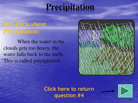 The Water Cycle By