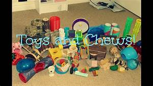 All The Hamsters Toys  U0026 Chews
