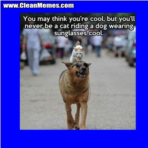 Clean Animal Memes - clean animal memes image memes at relatably com