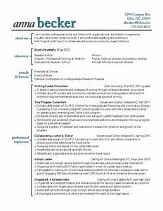 New Resume Styles 2014 choose the best resume format
