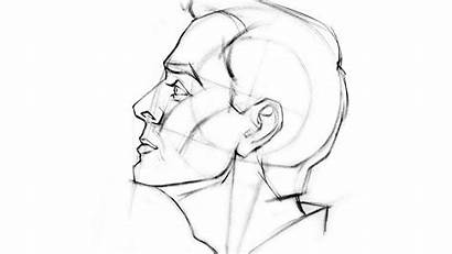 Draw Drawing Side Head Profile Face Human