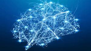Pulse 55  Watching Neural Activity Unfold In The Brain