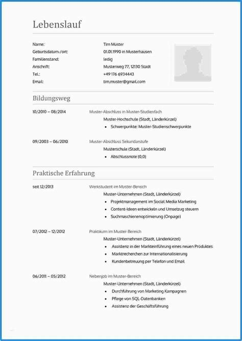 Word Lebenslauf Vorlage by 13 Lebenslauf 2016 Vorlage Word Usfpanhellenic